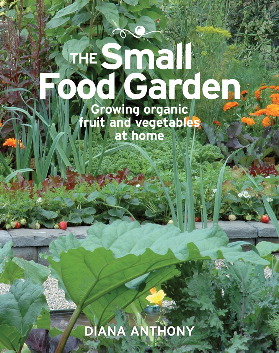 The Small Food Garden | NewSouth Books