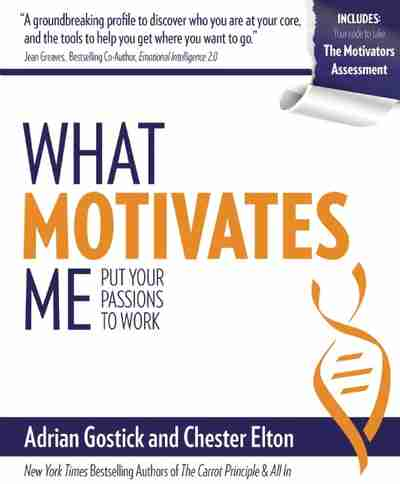 essay on what motivates you