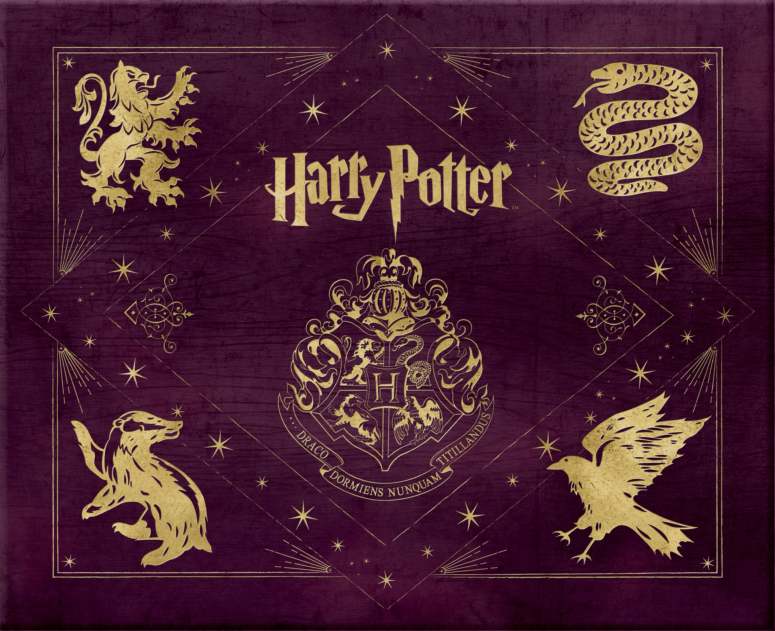 Harry Potter Invites is amazing invitation example