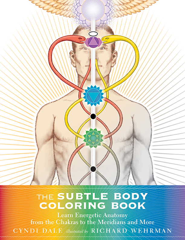 in the subtle body author cyndi dale offered readers the first comprehensive encyclopedia of the human energetic anatomy with the subtle body coloring - Human Body Coloring Book