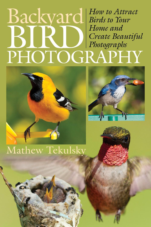 backyard bird photography newsouth books