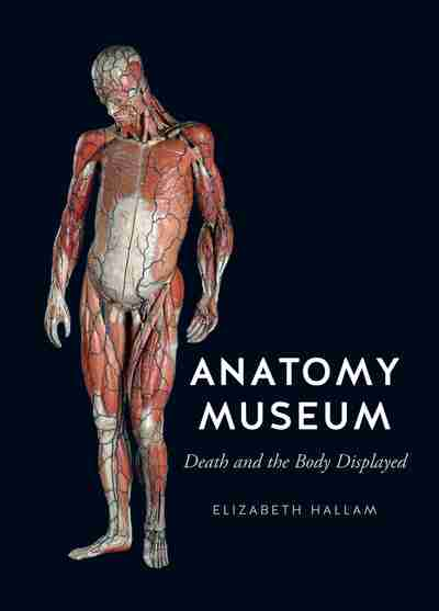 Anatomy Museum Newsouth Books
