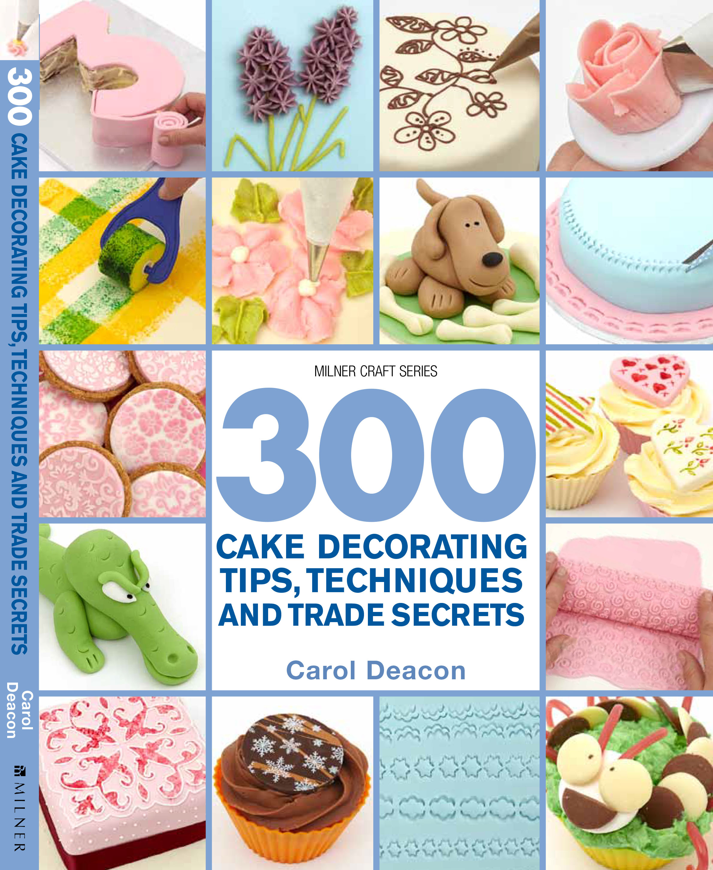 Cake Decorating Tips Book : September 2013 Trade Releases NewSouth Books